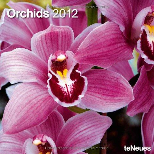 2012 Orchids Wall Calendar (English, German, French, Italian, Spanish and Dutch Edition)