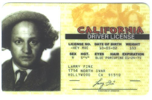 Three Stooges - Larry Fine Driver License Novelty Id Card by Sigsn 4 -