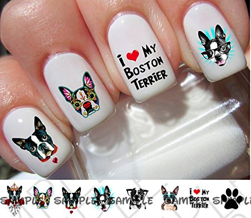 32 Boston Terrier Nail Decal
