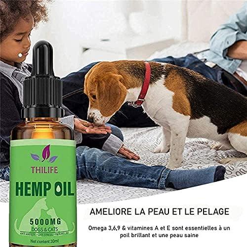 Huile chanvre bio chien et chat 5000 mg | Omega 3 6 9 pour animaux domestiques. Complément alimentaire Anti stress.Réduit l'anxiété, et améliore le sommeil. Pressée à froid
