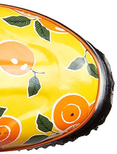Paludi Donna Frutta Pioggia Avvio Arancione