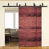 SMARTSTANDARD 6.6FT Bypass Double Door Sliding Barn Door Hardware (Black) (J Shape Hangers) (2 x 6.6 foot Rail)