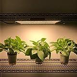 Upgraded Lenofocus LED Grow Light 672LED Full