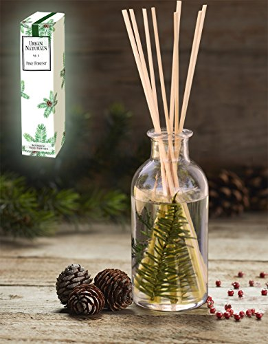 Pine Tree Reed Diffuser Oil by Urban Naturals | Pine Forest No. 3 | Pine Needles, Eucalyptus, Juniper Berries & Balsam Fragrance Notes | Year Round Christmas Tree Scent! Made in the (Christmas Scents)