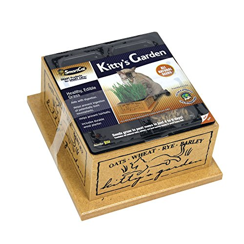 Smartcat 3844 Kitty'S Garden Edible Grass Planter ()