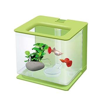 Cutepet Pecera Mini Acuario Regalo para Oficina Y Hogar 17.18*17.2Cm FA-095310,Green: Amazon.es: Deportes y aire libre
