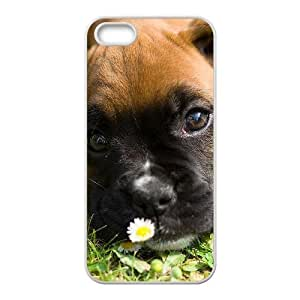 AKERCY The boxer Phone Case For iPhone 5,5S [Pattern-4]