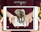 Animal 4D+ Augmented Reality Flashcards by Octagon