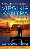 Carolina Home (A Dare Island Novel Book 1)