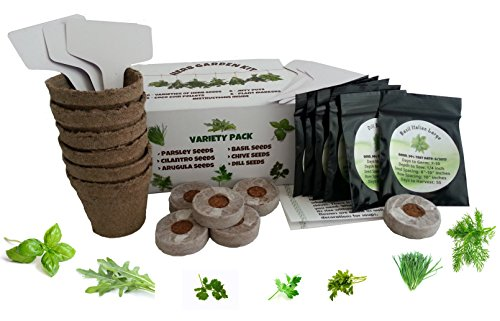 Grow 6 Herbs with Our Herb Garden Starter Kit. Set Contains Everything you Need- Basil, Dill, Chives, Parsley, Cilantro, Arugula Seeds, Coco Coir, Jiffy Pots, Plant Markers & Instructions Cilantro Garden Grow Pot