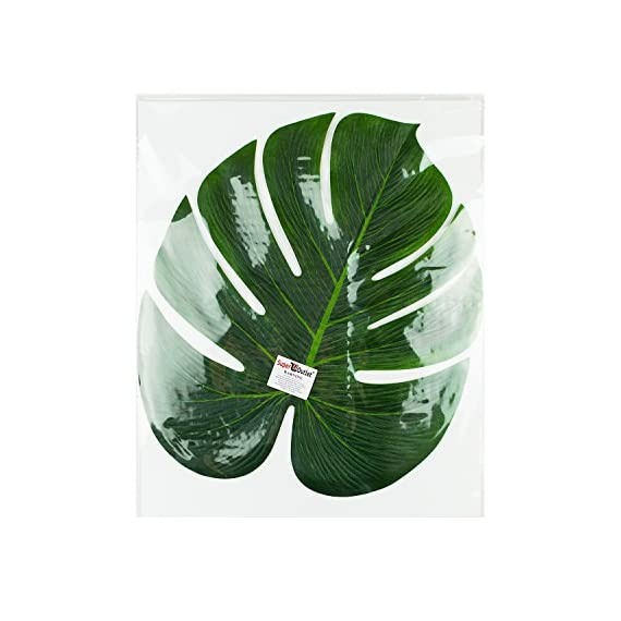 """Super Z Outlet Tropical Imitation Green Plant Paper Leaves 13"""" Hawaiian Luau Party Jungle Beach Theme Decorations for Birthdays, Arts & Crafts, Prom, Events, Weddings (6 Pack) - Create an authentic tropical island atmosphere with these large beautiful green faux leaves. Pair these with Hawaiian flowers and make them a stunning choice for party decorations Hawaiian style! Make beautiful vibrant decorations for the home living room, dining table, bedrooms, art gallery, luau party, restaurant decor and more. Use as a table scatter all over the an event venue, beach party, as party favors or stick some onto the walls! Place these large life-like leaves into vases, matched with other tropical plants, or hibiscus flowers and Hawaiian leis to create a effective stunnig tropical party decor. Make your guests feel like they're in paradise with these realistic polyester leaves. - living-room-decor, living-room, home-decor - 519ZRZxOIxL. SS570  -"""
