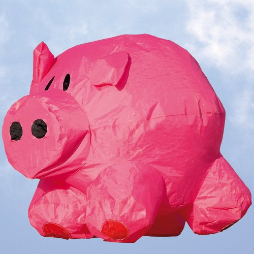 HQ Kites Bouncing Buddy - Porky Pete
