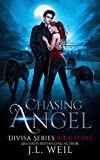 Chasing Angel (Divisa Book 3)