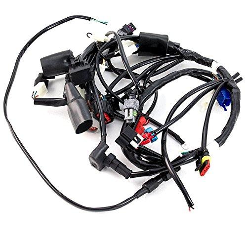 Wiring Loom (WRLM002):