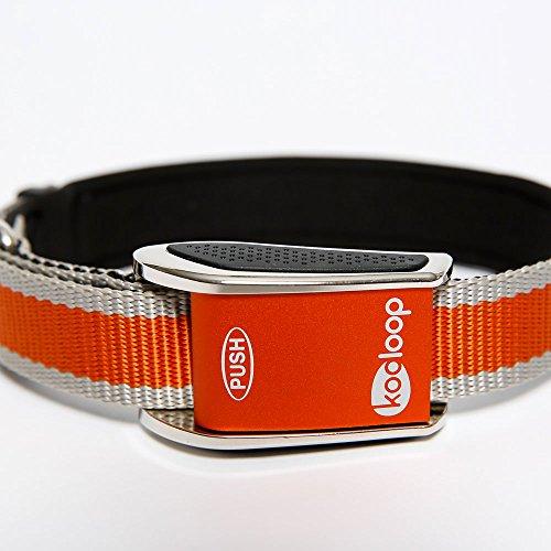 Kooloop Med-Big Heavy Duty Padded Dog Collar, Medium-Large, Orange -