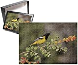 Photo Jigsaw Puzzle of USA, Arizona, Santa Rita Mountains. Male Scott s oriole on skunkbush branch