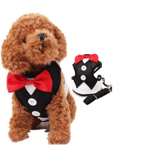 Costumes Tuxedo (Petty Love House Adorable Comfort Lead Leash Tuxedos Costume Bow Tie Design Pet Safety Walking Vest Harness)
