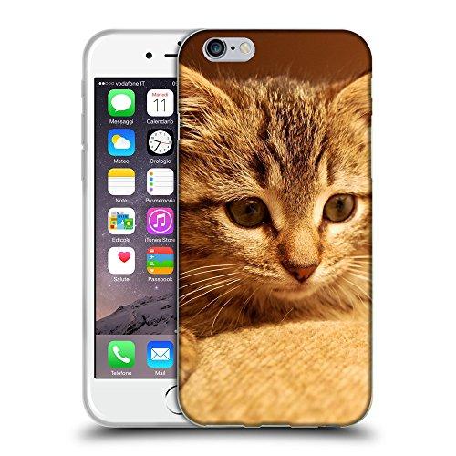 """Just Phone Cases Coque de Protection TPU Silicone Case pour // V00004273 Allongé chaton domestique // Apple iPhone 6 6S 6G PLUS 5.5"""""""