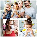 APEX EXPRT MR-2050 Quality Dual Countertop Drinking Water Filter - 5 Carbon Block and 5 Stage Mineral Cartridge - Best Alkaline Filtration System - for Healthier Safer Purified Water