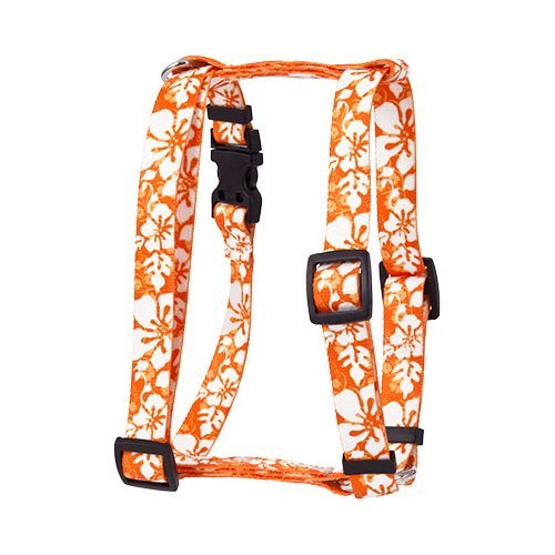 M Yellow Dog Design Roman Harness, Small Medium, Island Floral orange