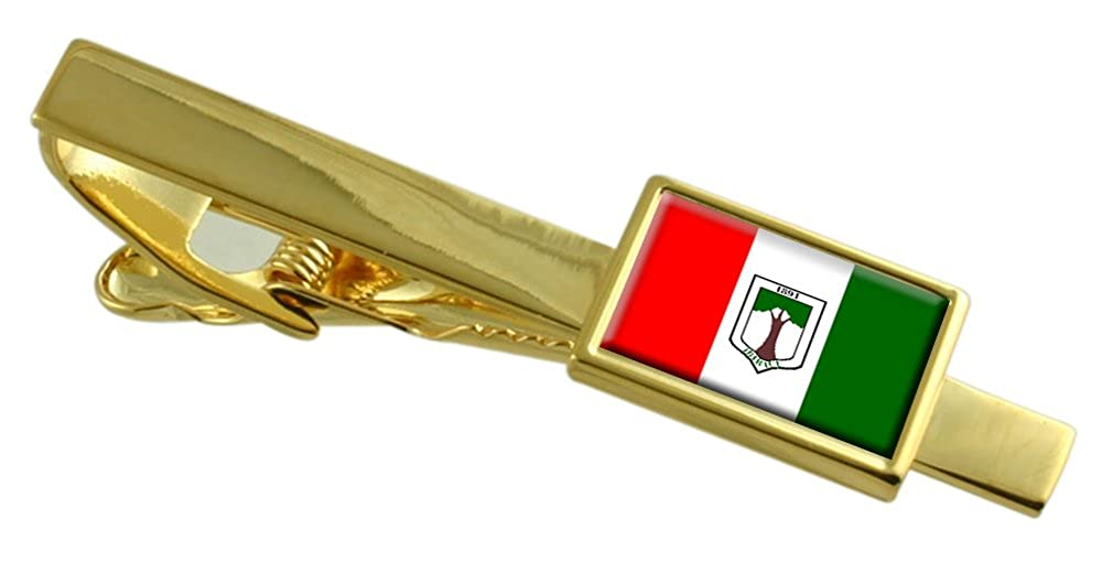 Select Gifts Ibiracu City Espirito Santo State Flag Gold-Tone Tie Clip