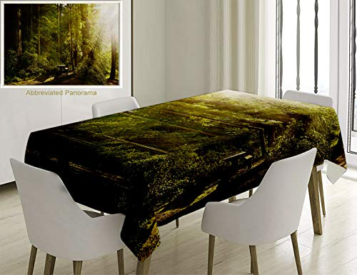 Unique Custom Cotton and Linen Blend Tablecloth Nature Sunny Rainforest with Wood Bench in Olympic National Park Washington USA Photo Green Tablecovers for Rectangle Tables, Small Size 48 x 24 inches]()