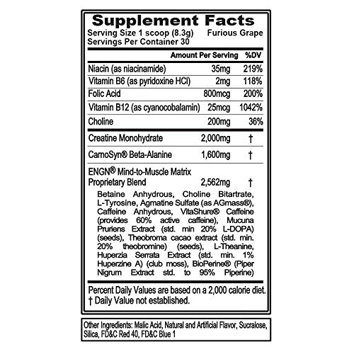 Evlution Nutrition ENGN Pre-Workout, Pikatropin-Free, 30 Servings, Intense Pre-Workout Powder for Increased Energy, Power, and Focus (Furious Grape)