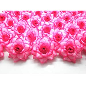"(100) Silk Hot Pink Edge Roses Flower Head - 1.75"" - Artificial Flowers Heads Fabric Floral Supplies Wholesale Lot for Wedding Flowers Accessories Make Bridal Hair Clips Headbands Dress 1"