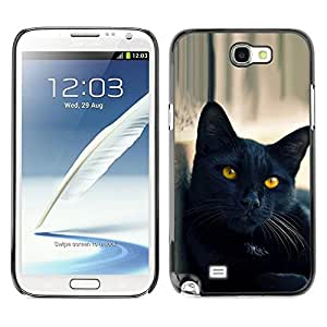 All Phone Most Case / Hard PC Metal piece Shell Slim Cover Protective Case for Samsung Note 2 N7100 Black Cat Yellow Eyes Nebelung