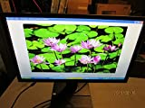 Acer B246HL 24'' LED LCD Monitor - 16:9 - 5 ms - Adjustable Display Angle - 1920 x 1080 - 16.7 Million Colors - 250 Nit - 100,000,000:1 - Full HD - Speakers - DVI - VGA - 20.90 W - Dark Gray - TCO '06.