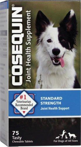 Cosequin Standard Strength