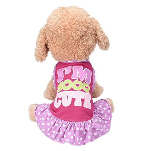 Dog Dress Wakeu Pet Puppy Apparel I'M SOOO CUTE Vest Clothes for Small Dog Girl (Pink, S)
