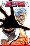 Bleach, Vol. 24: Immanent God Blues