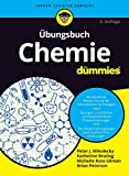 img - for Ubungsbuch Chemie Fur Dummies book / textbook / text book