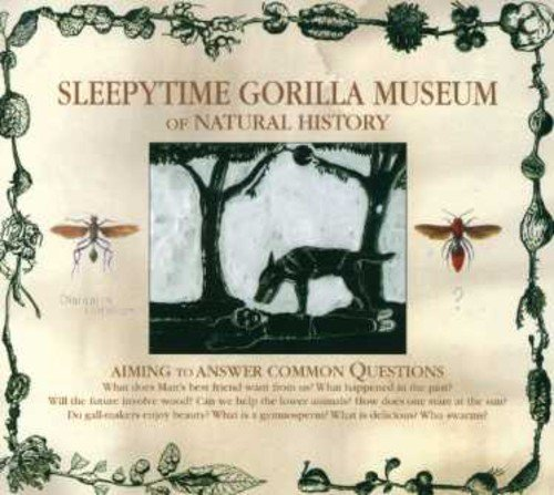 Sleepytime Gorilla Museum - And Museums More