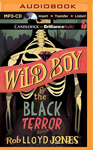 Wild Boy and the Black Terror by Candlewick on Brilliance Audio (Image #2)