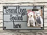 PHOTO HOLDER Dogs Spoiled Here SINGLE Picture Wall Frame Memo Board GRAY Grey Reclaimed Sign with Clip Wood Grandma Grandpa Dog baby Home Decor