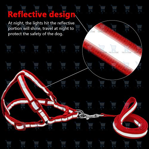 The DDS Store 7 Colors Nylon Reflective Dog Harness Leash Lead Set for Small Medium Dogs Puppy (Puppy Small, Red)