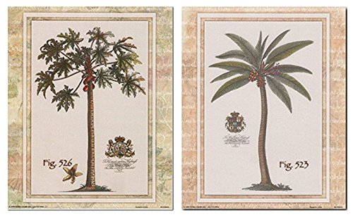 Impact Posters Gallery Wall Decor Picture Art Print Tropical Palm Tree Vintage Fig 526 Contemporary 8x10 Two Set Poster