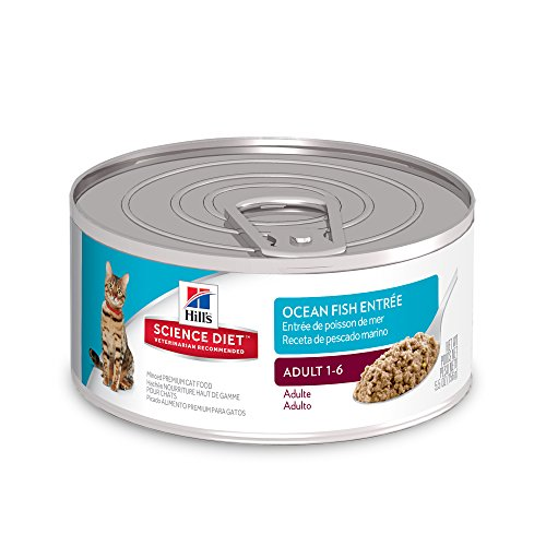 Fish Canned Food - Hill's Science Diet Adult Wet Cat Food, Ocean Fish Entrée Minced Canned Cat Food, 5.5 oz, 24 Pack