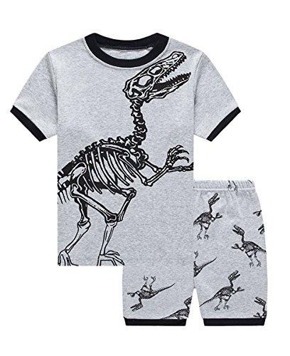 lymanchi Little Boy Pajamas Summer Cotton Sleepwear Dinosaur Short PJS Sets 2-7Y 808120 4T -