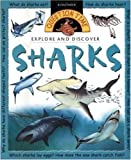 Explore and Discover - Sharks, Stephen Savage, 0753454416