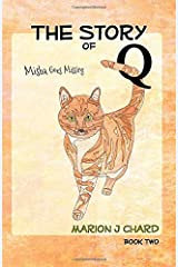 The Story of Q -  Misha Goes Missing (Volume 2) Paperback