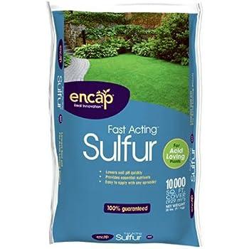 Encap 1089896 Fast Acting Sulfur Plus AST, 20-Pound