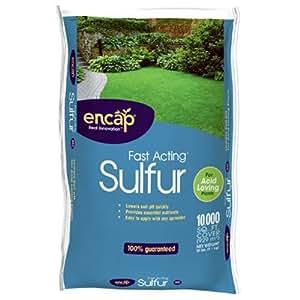 Amazon Com Encap 1089896 Fast Acting Sulfur Plus Ast 20