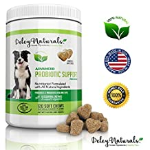 Deley Naturals, Probiotics for Dogs, 6 Digestive Enzymes, 4 Billion CFU's/2 chews, 120 Chicken Soft Chews, Improves Dog Allergies, Bad Dog Breath and Dog Diarrhea, 100% Natural Supplement