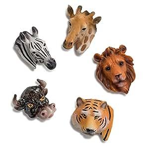 Amazon.com: Fridge Magnet Set -Includes 5 Beautiful Hand ...