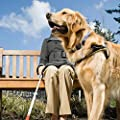 Frienda 2 Piece Double Sided Medical Alert Symbol ESA ID Tag, Personalized Working Dog Tag, ESA Pet Custom Engraved Tag for Emotional Support Dog, 1.25 Inch