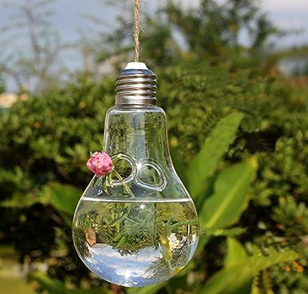AOHONG colgante bombilla forma jarrón de cristal flores maceta contenedor decoración del hogar, vidrio, Openning: Amazon.es: Hogar
