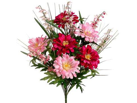 20-ZinniaBell-Flower-Bush-x12-Beauty-Pink-Pack-of-12